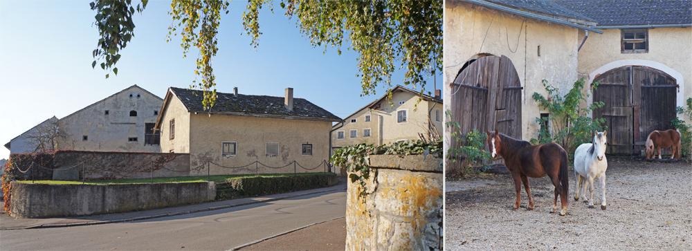 Jurahaus Eichstätt Schernfeld